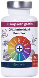 OPC Antioxidant Komplex I OPC angereichert mit 11 wichtigen Antioxidantien I Für Zellschutz, Anti-Aging, Immunsystem I Ohne Zusatzstoffe I 120 vegane Kapseln