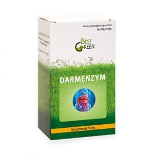 Darmenzym – Mischung aus den Verdauungs-Enzymen Amylase, Cellulase, Lactase, Lipase, Protease – mit dem Probiotikum Bacillus coagulans und wertvollen Pflanzenzubereitungen – 60 hochdosierte Kapseln – 2 Monatsvorrat
