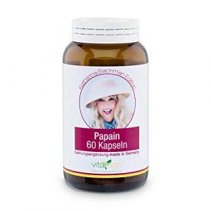 Katharina Bachman Papain Enzym Kapseln – VEGAN & hochdosiert – 60 Stück Papain Kapseln a 500 mg (400mg Papain und 100mg Kapselhülle aus Methylcellulose)