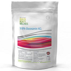 1000g / 1kg GLUCOSAMIN HCL Pulver | 100% Rein ohne Zusatzstoffe | auch für Tiere (Pferde, Hunde usw) geeignet | Premium Qualität