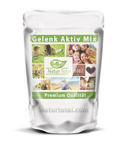 Gelenk Aktiv Mix 400g | Das Schmiermittel für die Gelenke mit Glucosamine + Hyaluronsäure +Chondroitin + MSM