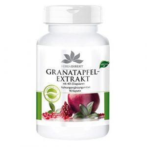 Warnke Gesundheitsprodukte Granatapfel-Extrakt mit 40% Ellagsäuren (90 Kapseln), 1er Pack (1 x 56 g)