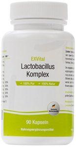 EXVital Lactobacillus Komplex, 10 Milliarden KBE, 90 Kapseln in Premiumqualität – Lactobacillus Acidophilus –1er Pack (1x45g)
