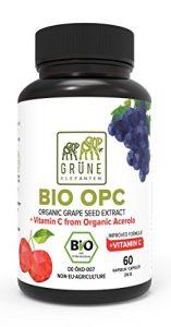 Grüne Elefanten's Bio OPC Traubenkernextrakt mit Bio Acerola Hochdosiert 2 Monatsvorrat – 390mg Kapseln Trauben aus Frankreich