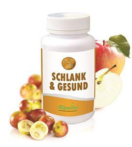 Alpvital Schlank & Gesund – Apfelessig Camu Camu Detox Diät Fettverbrennung Stoffwechsel