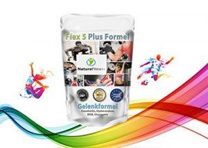 Flex 5 Plus Formel für gesunde Gelenke mit Chondroitin, Hyaluronsäure, MSM, Glucosamin
