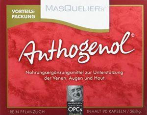 Masquelier's Original OPCs Anthogenol 90 Kapseln, 1er Pack (1 x 28,8 g)
