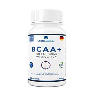 BCAA Tabletten | 1200mg verzweigtkettige Aminosäuren | BCAA+ mit zugesetztem Vitamin B6 als Absorptionhilfe | Leucin, Isoleucin und Valin im optimalen 2 1 1 Nährstoffverhältnis | Aminosäure-Tabletten (nicht Kapseln) | Geeignet für Männer und Frauen | in GB erzeugt und GMP-zertifiziert | OSHUNsport Ernährung