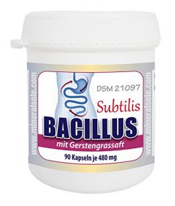 Bacillus Subtilis DSM 21097 mit Gerstengrassaft (90 Kapseln)