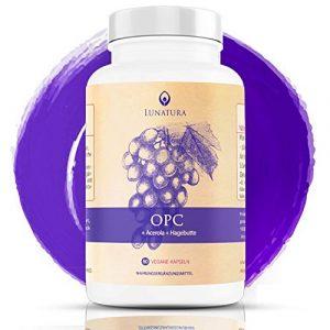 OPC – Traubenkernextrakt Kapseln – 95% und reines OPC als Antioxidantien – natürliches Vitamin C aus der Acerola Kirsche » ex Grape Seed Extrakt (Traubenkern) «