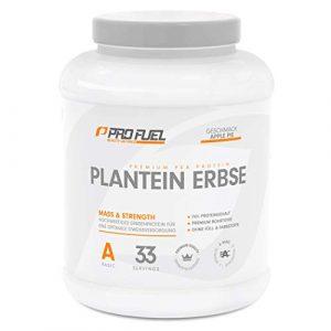 PLANTEIN ERBSE | Vegan Protein • Pflanzliches Premium Eiweißpulver aus gelben Erbsen | High Protein | Cremig & Lecker | Made in Germany | 1kg – APPLE PIE (Apfelkuchen)