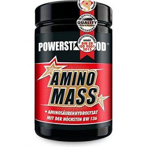 AMINOSÄUREN-KOMPLEX AMINO MASS, die hochdosierte beste Aminosäure mit der weltweit höchsten biologischen Wertigkeit von 136 – Proteinqualität- zum Aufbau von Muskelmasse (500 Tabletten)
