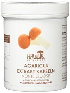 Agaricus Extrakt, Vorteilsdose 240 Kapseln