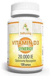 Zelltuning Vitamin D3 Synergy Hochdosiert – 20.000 IE pro Depot-Kapsel – Vitamin D konzipiert in einer Omega-3-Fettsäuren-Matrix – Optimal Bioverfügbar – 120 Kapseln, Ohne Magnesiumstearat!