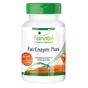 FairEnzym Plus – GROSSPACKUNG für 3 Monate – HOCHDOSIERT – 100 DRCaps® – Enzym-Komplex