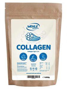 Collagen Pulver 1kg – Kollagen Hydrolysat – Eiweiß-Pulver Geschmacksneutral – Wehle Sports – Made in Germany Kollagen Typ 1 2 3 Lift Drink