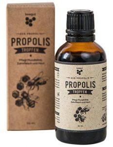 beegut Propolis Tropfen 50ml mit 20% natürlichem Propolis-Extrakt, flüssiges Propolis in hochwertiger Imkerqualität, Schutzharz der Bienen, Hergestellt in Deutschland