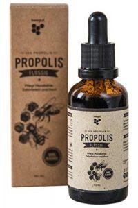 beegut Propolis ohne Alkohol, 50ml wasserlösliche Tropfen Tinktur mit 10% natürlichem Propolis, Schutzharz der Bienen