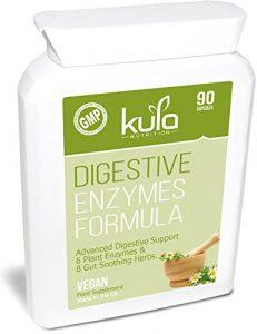 Verdauungsenzym-Formel – 90 vegane Kapseln – Fortschrittliche Verdauungsenzym-Mischung mit 8 Kräutern einschließlich Alfalfa, Apfelessig, Kümmel, Kamille, Fenchel, Ingwer, Pfefferminze und Kurkuma.