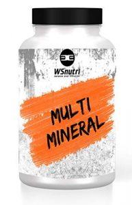 WSnutri Vitamine und Mineralstoffe I 60 Kapseln I Hochdosiert I Essentielle Vitamine und Mineralstoffe I Unterstützung Immunsystem – Gesundheit