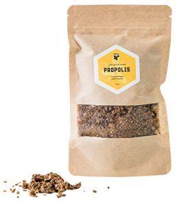 beegut Propolis roh, natürlich & frisch geerntet in der EU, 100g hochwertiges Rohpropolis, Schutzharz der Bienen