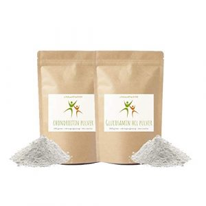 Chondroitin Pulver 100 g + Glucosamin HCL Pulver 300 g – ohne Zusätze