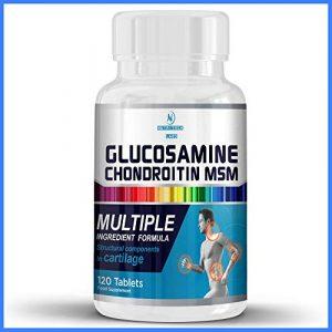 glucosamin chondroitin msm hochdosiert kapseln -100% natürliche unterstützt gesunde Knochen, hilft bei gelenke schmerzen und unterstützt die Entwicklung von Knorpeln – 120 gelenke kapseln(tabletten)