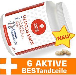 GLUCOSAMIN PLUS CHONDROITIN, MSM, COLLAGEN, INGWER, Komplex von Zitrusbioflavonoiden | 100% Vegane 120 Tabletten | Optimaler Ergänzungsmittel Komplex von 6 aktiven Stoffen für die Gelenkpflege