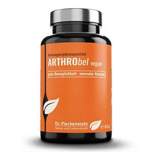Neu: Arthrobel vegan, vegane Chondroitin & Glucosamin Kapseln + L-Cystin (Cystein), Nahrungsergänzungsmittel mit den Vitaminen C, D und K, Zink, Biotin und Bor. Hochdosiert.