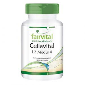 Cellavital – HOCHDOSIERT – 120 Kapseln – Antioxidantien im Komplex mit Acetyl-L-Carnitin, Taurin, Q10 und mehr