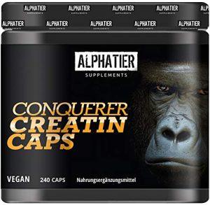 Creapure Caps – 240 Creatin Kapseln – CREATINE-MONOHYDRAT – 99,99% rein – höchste Dosierung – Alphatier Kreatin – 750mg Creatinmonohydrat pro Creatinkapsel – Made in Germany